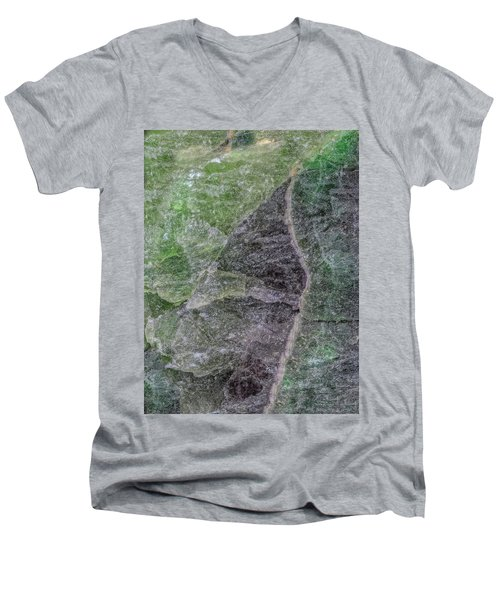 Earth Portrait 294 Men's V-Neck T-Shirt