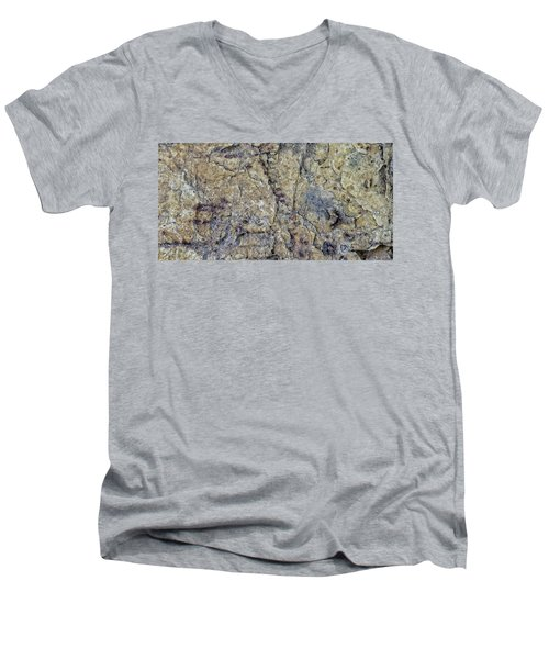 Earth Portrait L1 Men's V-Neck T-Shirt