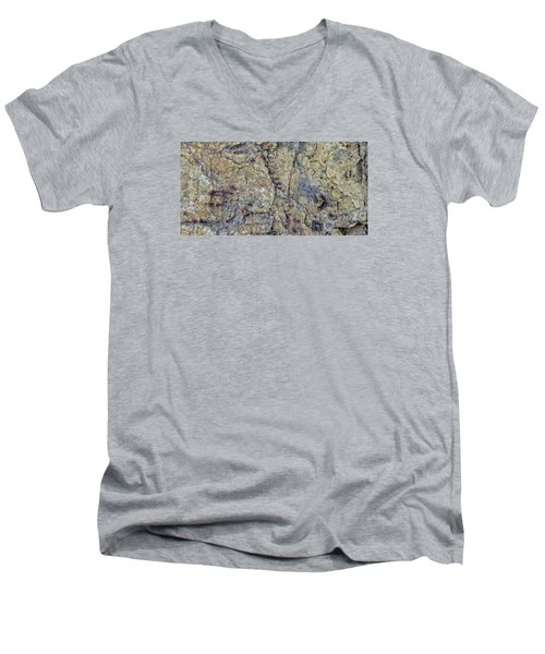 Earth Portrait L1 Men's V-Neck T-Shirt