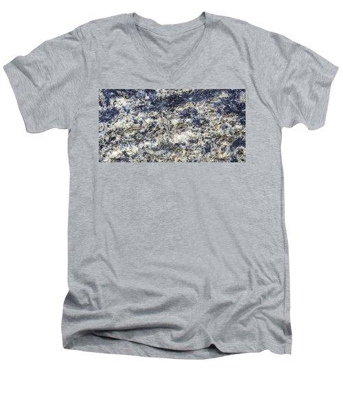 Earth Portrait L5 Men's V-Neck T-Shirt