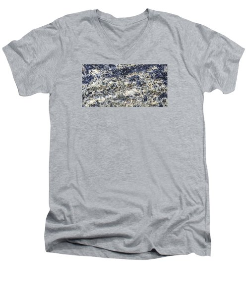 Earth Portrait L5 Men's V-Neck T-Shirt