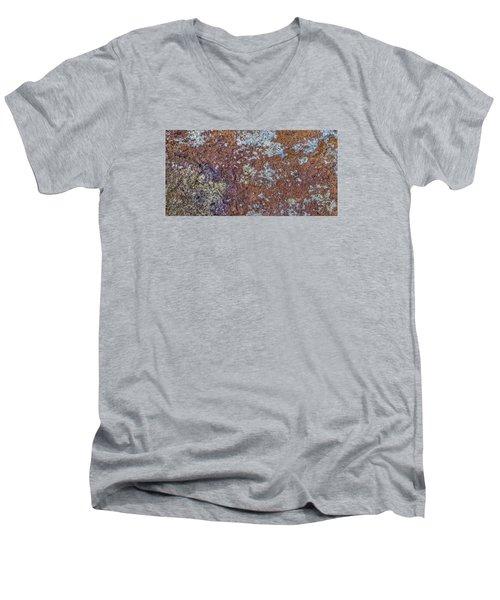 Earth Portrait L6 Men's V-Neck T-Shirt
