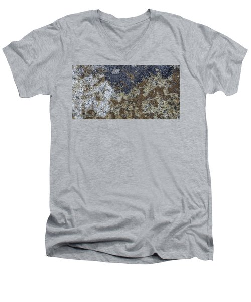 Earth Portrait L8 Men's V-Neck T-Shirt