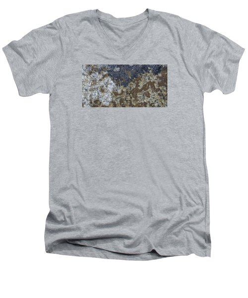 Earth Portrait L8 Men's V-Neck T-Shirt