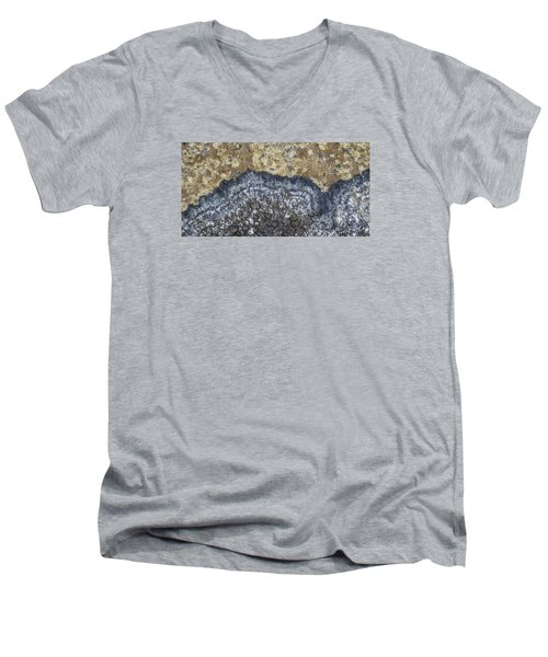 Earth Portrait L9 Men's V-Neck T-Shirt