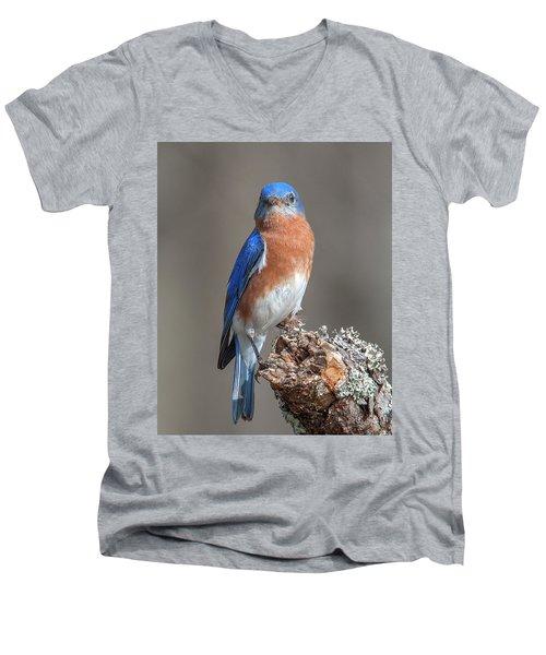 Eastern Bluebird Dsb0300 Men's V-Neck T-Shirt