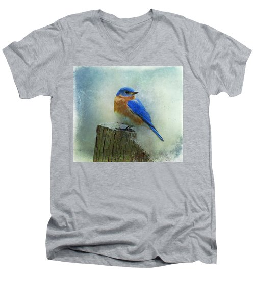Eastern Bluebird II Men's V-Neck T-Shirt