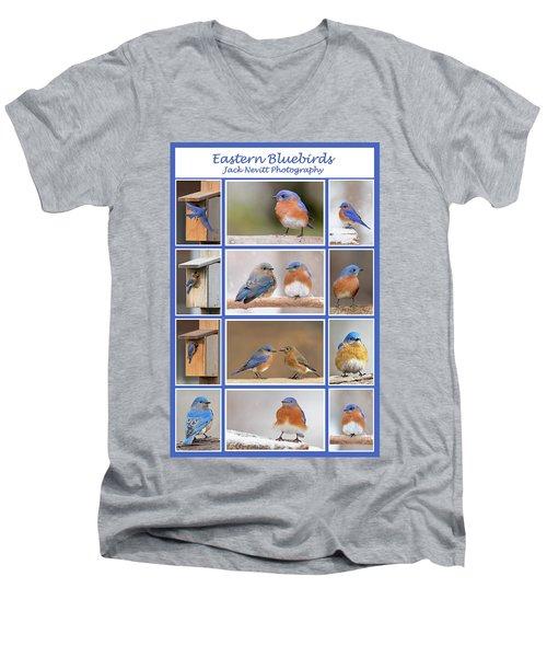 Eastern Bluebird Poster Men's V-Neck T-Shirt