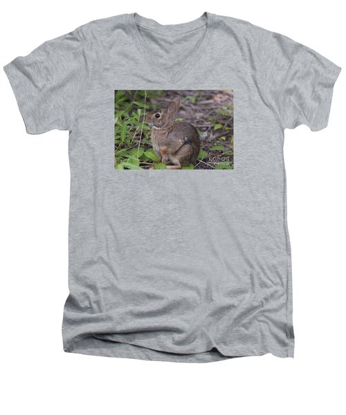 Eastern Cottontail 20120624_11a Men's V-Neck T-Shirt by Tina Hopkins