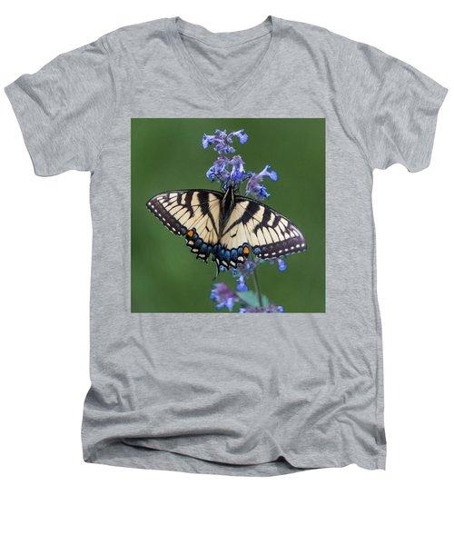 Eastern Tiger Swallowtail Wingspan Men's V-Neck T-Shirt