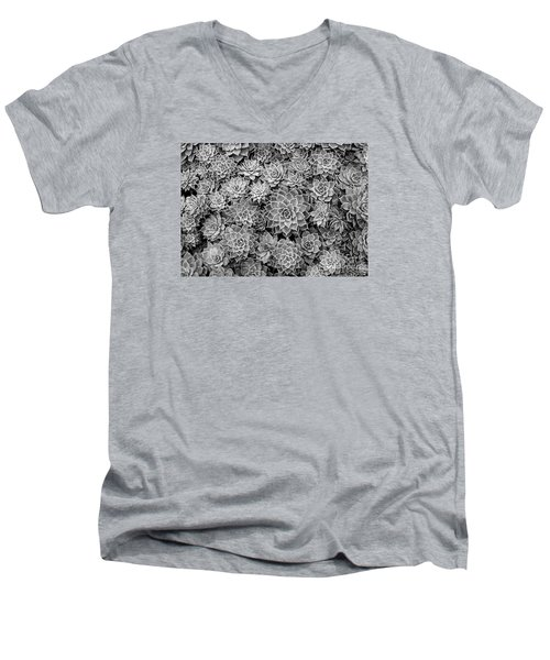 Men's V-Neck T-Shirt featuring the photograph Echeveria Monochrome by Ranjini Kandasamy
