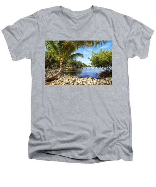 Edisons Back Yard Men's V-Neck T-Shirt