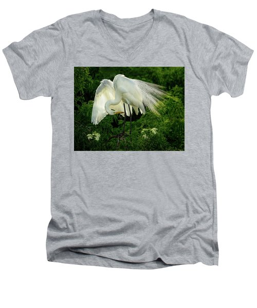 Egret Preening Men's V-Neck T-Shirt