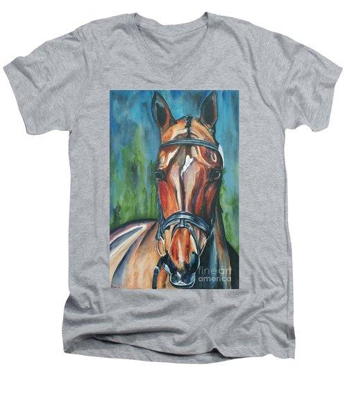 Elegance In Color Men's V-Neck T-Shirt