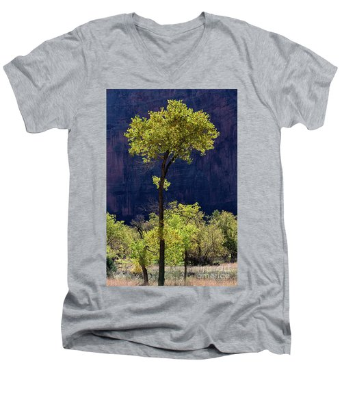 Elegance In The Park Utah Adventure Landscape Photography By Kaylyn Franks Men's V-Neck T-Shirt