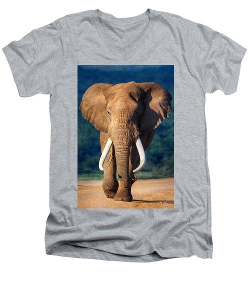 Elephant Approaching Men's V-Neck T-Shirt by Johan Swanepoel