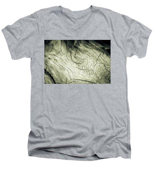 Elephant Wood Of Memory Men's V-Neck T-Shirt