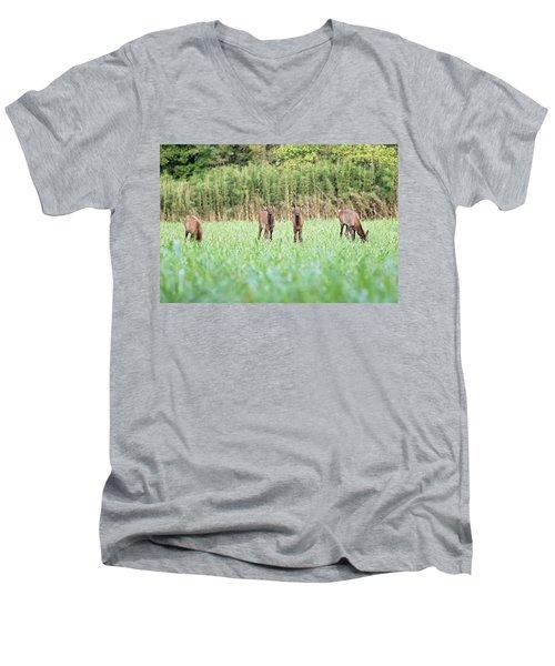 Elk Calves Men's V-Neck T-Shirt