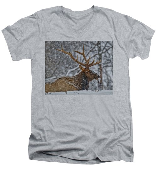 Elk Enjoying The Snow Men's V-Neck T-Shirt by Michael Peychich