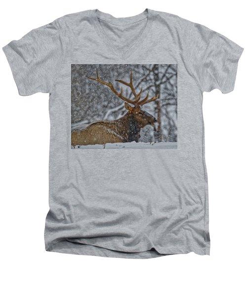 Elk Enjoying The Snow Men's V-Neck T-Shirt