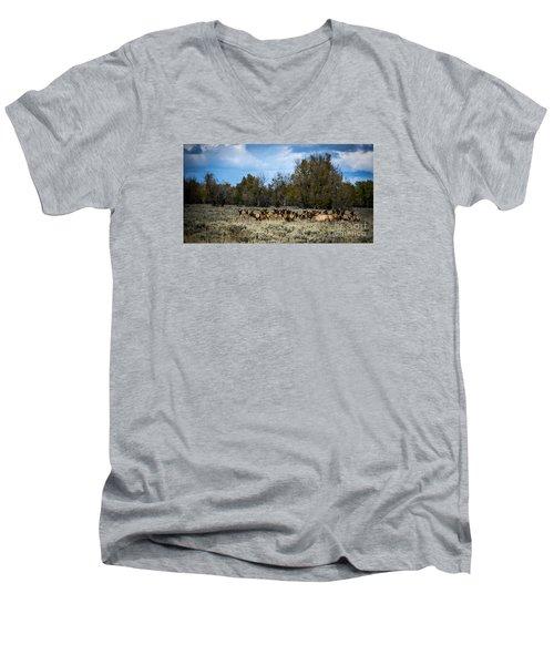 Elk Family Men's V-Neck T-Shirt by Sandy Molinaro