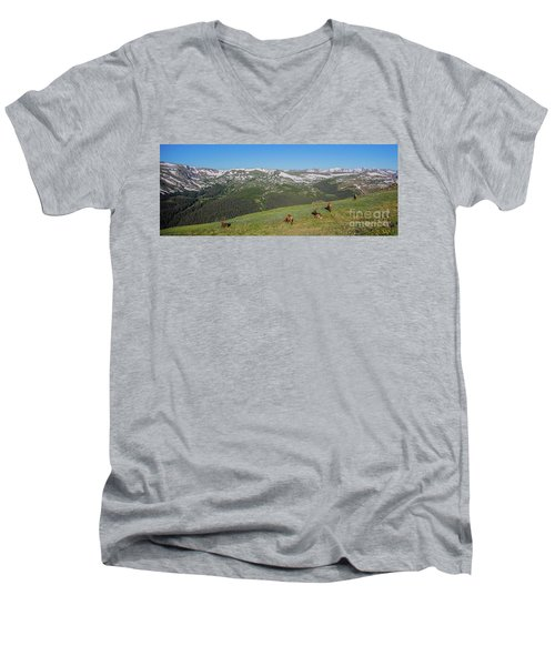 Elk Grazing In Rmnp Men's V-Neck T-Shirt