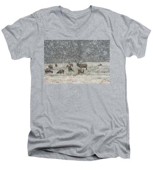 Elk Harem In Falling Snow Men's V-Neck T-Shirt