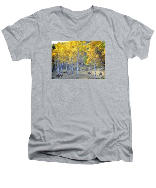 Men's V-Neck T-Shirt featuring the photograph Elk In Rmnp Colorado by Nava Thompson