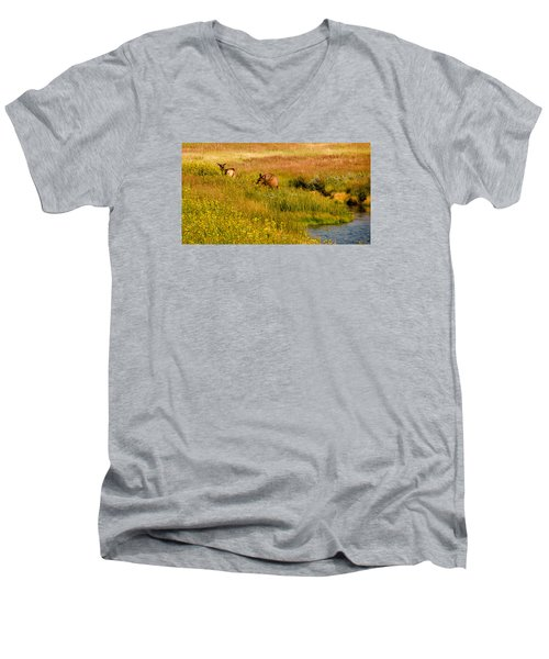 Elk In The Wild Flowers Men's V-Neck T-Shirt by Cathy Donohoue