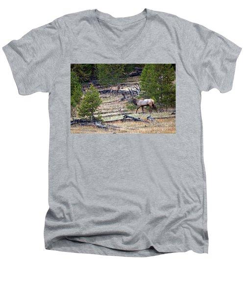 Elk In Yellowstone Men's V-Neck T-Shirt