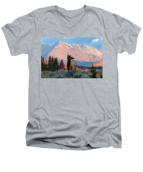 Elk Majesty Men's V-Neck T-Shirt