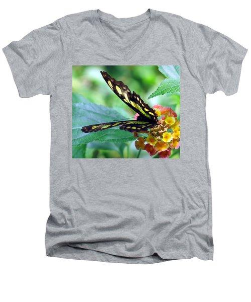 Elusive Butterfly Men's V-Neck T-Shirt by Betty Buller Whitehead