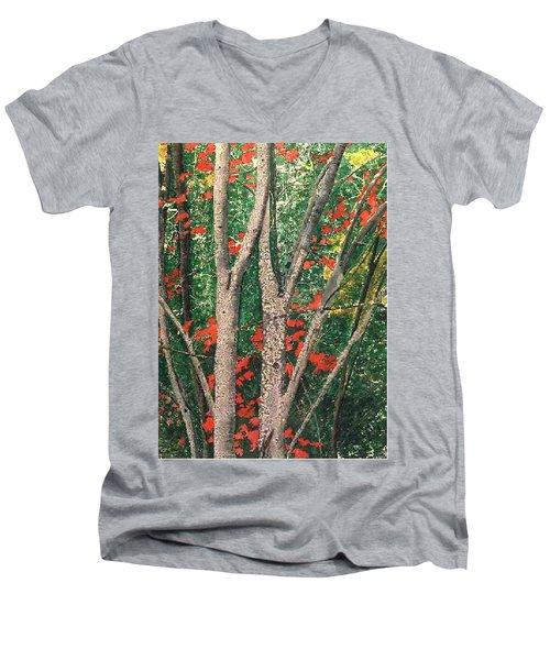 Enchanted Birches Men's V-Neck T-Shirt
