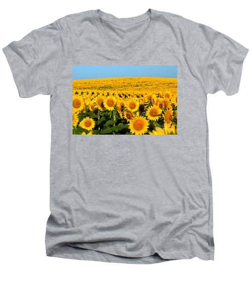 Endless Sunflowers Men's V-Neck T-Shirt by Catherine Sherman