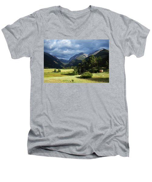 Endovalley Aftenoon Men's V-Neck T-Shirt