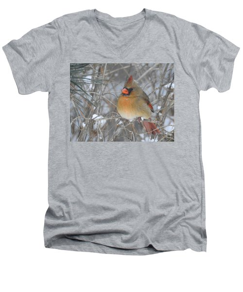 Enjoying The Snow Men's V-Neck T-Shirt