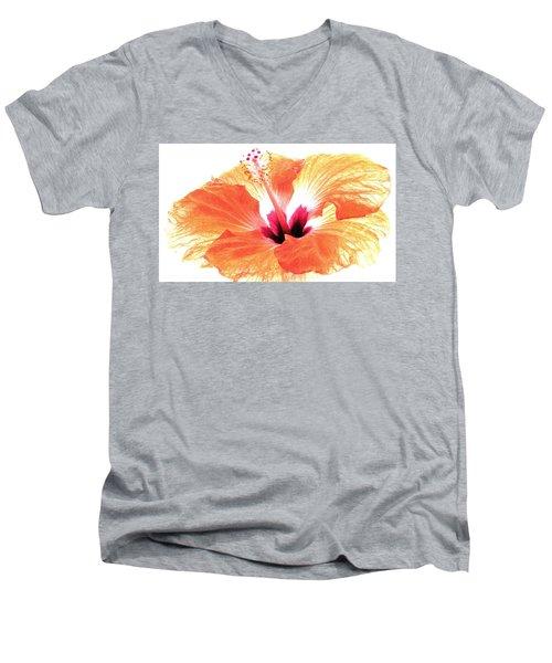 Enlightened Men's V-Neck T-Shirt