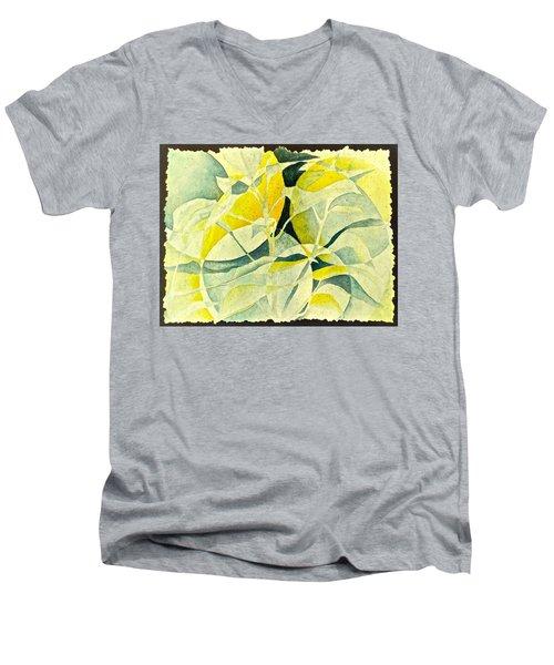 Entering A New Realm Men's V-Neck T-Shirt