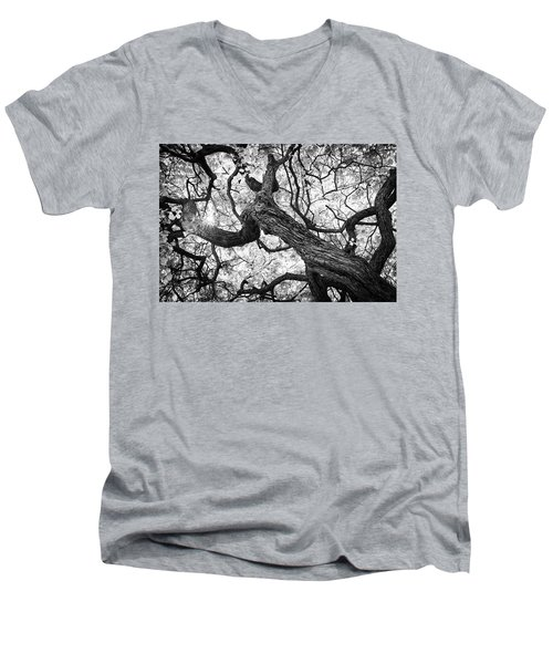 Ethereal Maple Men's V-Neck T-Shirt
