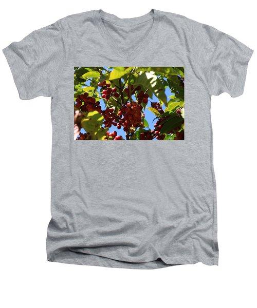 Ethiopian Coffee Beans Men's V-Neck T-Shirt