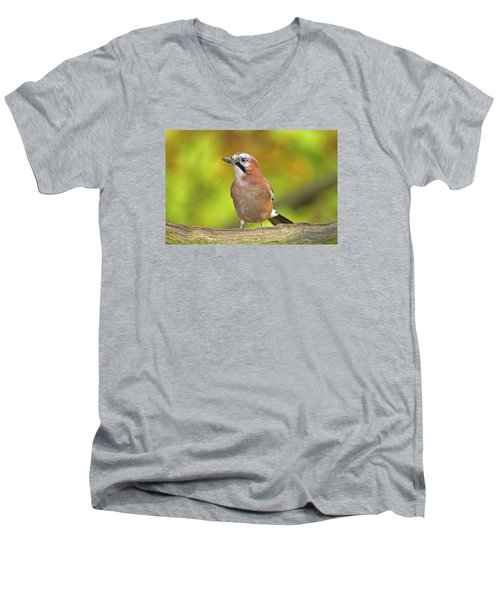 Men's V-Neck T-Shirt featuring the photograph Eurasian Jay by Paul Scoullar