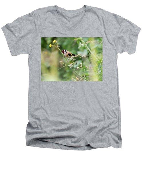 European Goldfinch Perched On Flower Stem B Men's V-Neck T-Shirt