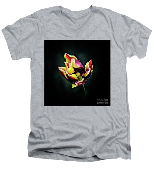 Evanescent Men's V-Neck T-Shirt