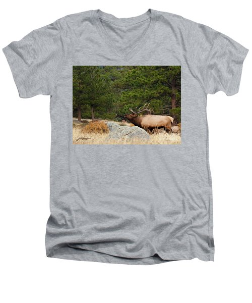 Evening Song Men's V-Neck T-Shirt