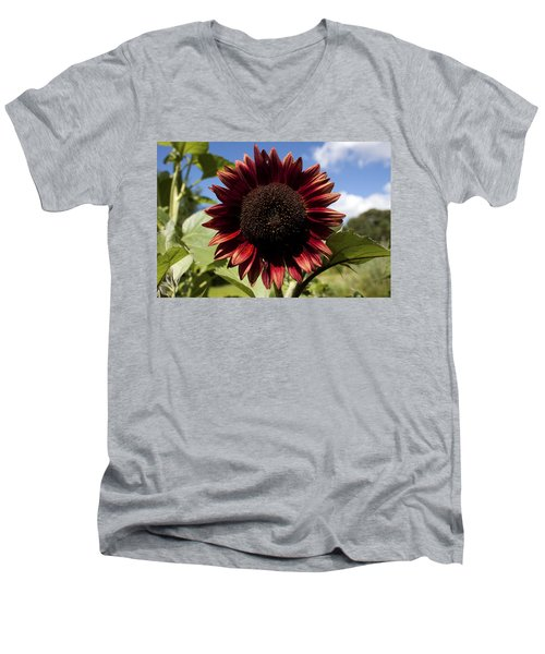 Evening Sun Sunflower #2 Men's V-Neck T-Shirt by Jeff Severson