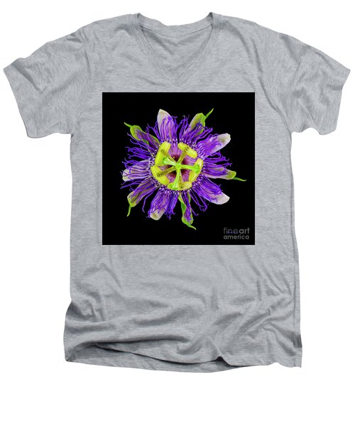 Expressive Yellow Green And Violet Passion Flower 50674c Men's V-Neck T-Shirt
