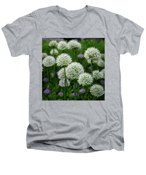 Exquisite Beauty Men's V-Neck T-Shirt