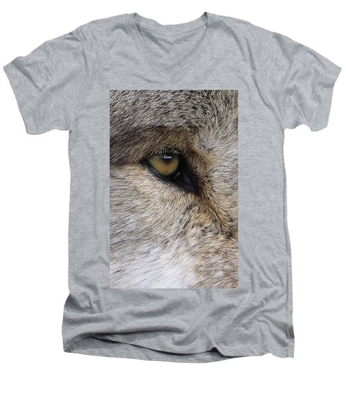 Eye Catcher Men's V-Neck T-Shirt