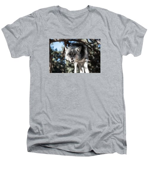 Eyes On The Prize Men's V-Neck T-Shirt
