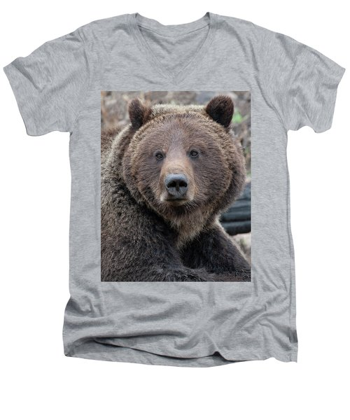 Face Of The Grizzly Men's V-Neck T-Shirt